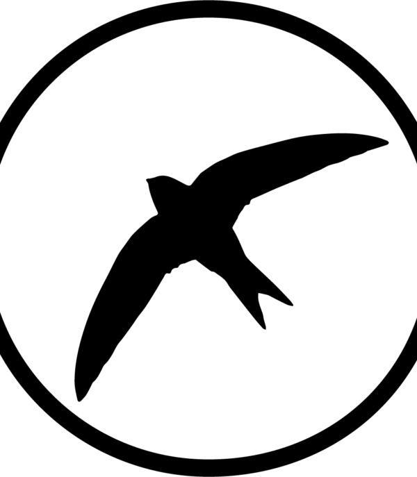 SwiftView Logo